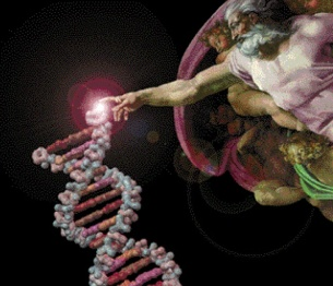 ID DNA